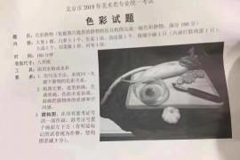 2019年北京美术联考/统考考试题目(完整版)