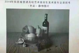 2019年陕西美术联考/统考考试题目(完整版)