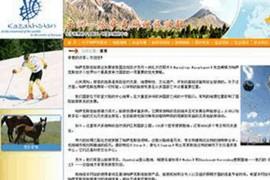 哈萨克斯坦旅游部:www.visitkazakstan.cn