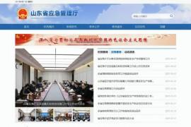 山东省应急管理厅:yjt.shandong.gov.cn