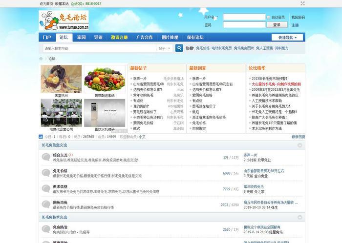 兔毛论坛:www.tumao.com.cn